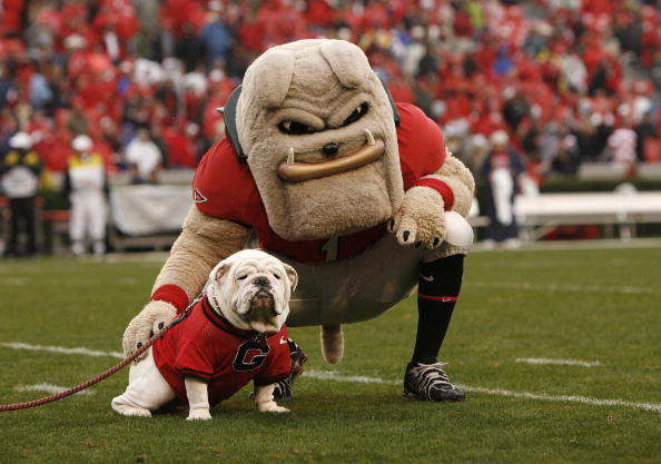 Uga and Hairy Dawg. Photo by Mike Zarrilli/Getty Images