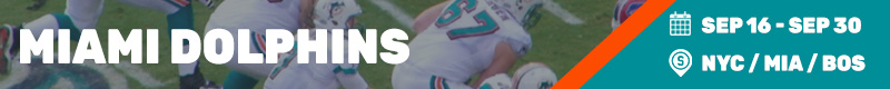 miami dolphins BEST TIME TO VISIT